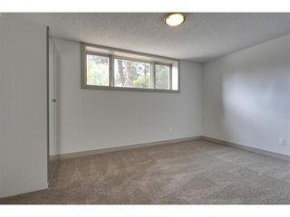 Photo 18: 2028 GLENWOOD Drive SW in Calgary: 3 Level Split for sale : MLS®# C3542268