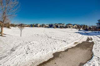 Photo 27: 2081 Luxstone Boulevard SW: Airdrie Detached for sale : MLS®# A1073784