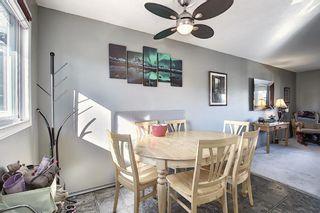 Photo 9: 1711 65 Street NE in Calgary: Pineridge Detached for sale : MLS®# A1038776