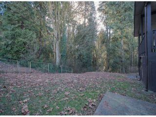 Photo 16: 10446 RIVER Road in Delta: Nordel Duplex for sale (N. Delta)  : MLS®# F1403425