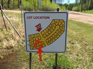 Photo 4: : Rural Lesser Slave River M.D. Rural Land/Vacant Lot for sale : MLS®# E4247783