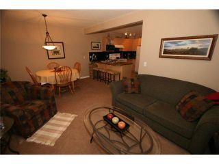 Photo 11: 46 102 CANOE Square: Airdrie Townhouse for sale : MLS®# C3452941
