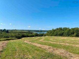 Photo 8: 11.6 acres East Tracadie Road in East Tracadie: 301-Antigonish Vacant Land for sale (Highland Region)  : MLS®# 202122282