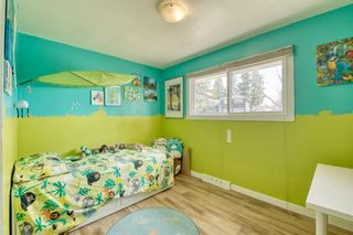 Photo 20: 11 Calandar Road NW in Calgary: Collingwood Detached for sale : MLS®# A1091060