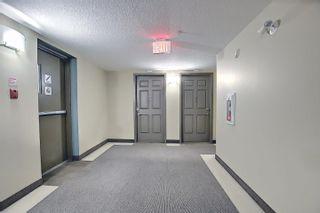 Photo 30: 321 6315 135 Avenue in Edmonton: Zone 02 Condo for sale : MLS®# E4255490
