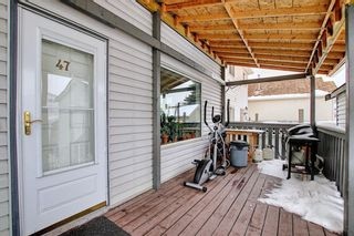 Photo 34: 47 Appleburn Close SE in Calgary: Applewood Park Detached for sale : MLS®# A1049300