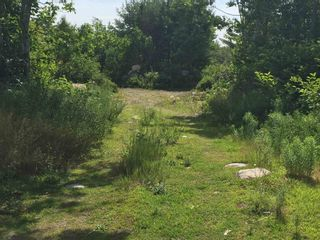 Photo 2: Highway #3 in Port Mouton: 406-Queens County Vacant Land for sale (South Shore)  : MLS®# 202117345