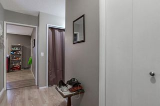 Photo 2: 255 Maitland Crescent NE in Calgary: Marlborough Park Detached for sale : MLS®# A1061446