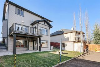 Photo 39: 232 Aspenmere Close: Chestermere Detached for sale : MLS®# A1102955