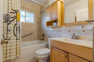 Photo 20: 303 42 Street SW in Calgary: Wildwood Detached for sale : MLS®# A1134148