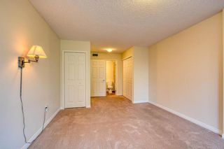 Photo 31: 201 2425 90 Avenue SW in Calgary: Palliser Apartment for sale : MLS®# A1052664