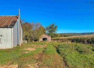 Photo 9: 8989 Highway 221 in Sheffield Mills: 404-Kings County Vacant Land for sale (Annapolis Valley)  : MLS®# 202125781