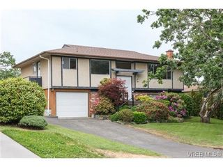 Photo 1: 964 Nicholson St in VICTORIA: SE Lake Hill House for sale (Saanich East)  : MLS®# 732243