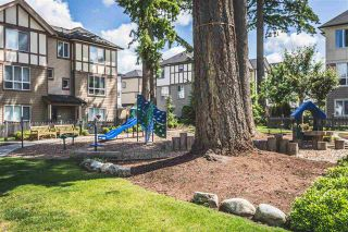"""Photo 22: 147 7938 209 Street in Langley: Willoughby Heights Townhouse for sale in """"RED MAPLE PARK"""" : MLS®# R2537088"""