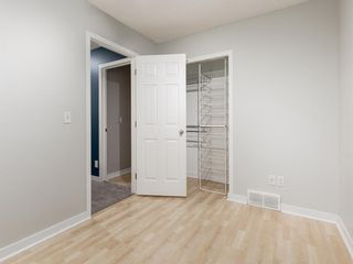 Photo 35: 183 ELGIN Way SE in Calgary: McKenzie Towne Detached for sale : MLS®# A1046358