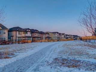 Photo 47: 339 HILLCREST Heights SW: Airdrie Detached for sale : MLS®# A1061984