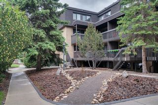 Photo 22: 20 3519 49 Street NW in Calgary: Varsity Apartment for sale : MLS®# A1117151