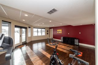 Photo 30: 70 Greystone Drive: Rural Sturgeon County House for sale : MLS®# E4226808