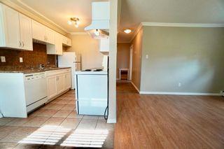 Photo 21: 2 10904 159 Street in Edmonton: Zone 21 Condo for sale : MLS®# E4250619