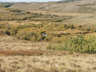 Photo 16: For Sale: 270048 Twp Rd 10, Cardston, T0K 0K0 - A1152942