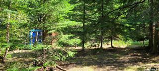 Photo 14: 703 Marine Drive in Emma Lake: Residential for sale : MLS®# SK821877