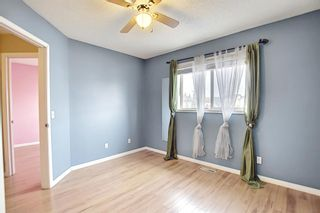 Photo 18: 102 Martin Crossing Grove NE in Calgary: Martindale Detached for sale : MLS®# A1130397