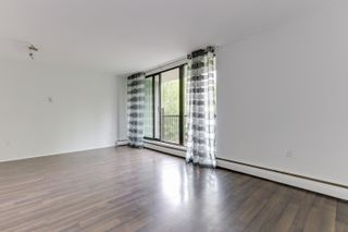 Photo 9: 403 1330 HARWOOD Street in Vancouver: West End VW Condo for sale (Vancouver West)  : MLS®# R2615159