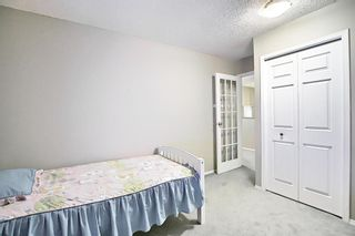 Photo 36: 144 Martinwood Court NE in Calgary: Martindale Detached for sale : MLS®# A1126396