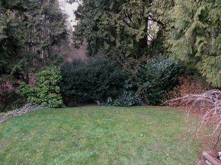 Photo 12: 24129 102B AVENUE in MAPLE RIDGE: Home for sale
