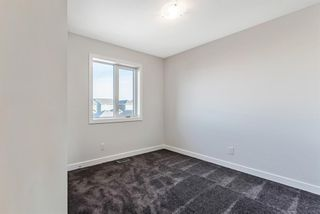 Photo 21: 163 Evanscrest Place NW in Calgary: Evanston Detached for sale : MLS®# A1065749
