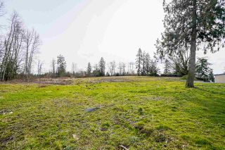 Photo 21: 25170 32 Avenue in Langley: Otter District House for sale : MLS®# R2543357