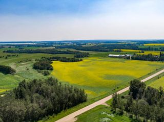 Photo 20: 461017A RR 262: Rural Wetaskiwin County House for sale : MLS®# E4255011
