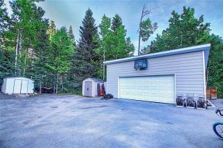 Photo 50: 9 MOUNTAIN LION Place: Bragg Creek Detached for sale : MLS®# A1032262