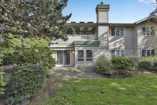 """Photo 31: 296 13888 70 Avenue in Surrey: East Newton Townhouse for sale in """"CHELSEA GARDENS"""" : MLS®# R2621747"""