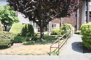 Photo 36: 210 32910 Amicus Place in Abbotsford: Central Abbotsford Condo for sale