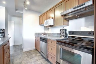 Photo 7: 402 1027 Cameron Avenue SW in Calgary: Lower Mount Royal Apartment for sale : MLS®# A1064323