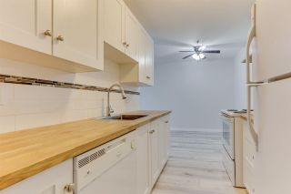 """Photo 10: 440 22661 LOUGHEED Highway in Maple Ridge: East Central Condo for sale in """"GOLDEN EARS GATE"""" : MLS®# R2513014"""