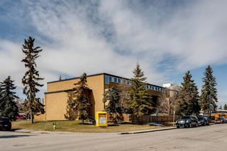 Photo 31: 211 7007 4A Street SW in Calgary: Kingsland Apartment for sale : MLS®# A1086391