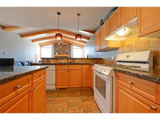 Photo 8: 94 SIMCOE Circle SW in Calgary: Signature Parke House for sale : MLS®# C4006481