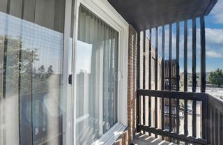 Photo 10: 403 507 57 Avenue SW in Calgary: Windsor Park Apartment for sale : MLS®# A1146991