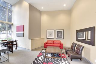 """Photo 14: 202 1199 SEYMOUR Street in Vancouver: Downtown VW Condo for sale in """"BRAVA"""" (Vancouver West)  : MLS®# R2260600"""