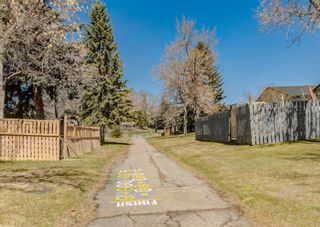 Photo 43: 3042 30A Street SE in Calgary: Dover Detached for sale : MLS®# A1097578