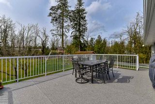"""Photo 16: 29340 GALAHAD Crescent in Abbotsford: Bradner House for sale in """"Bradner"""" : MLS®# R2269124"""