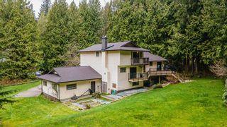 Photo 4: 12414 MCNUTT Road in Maple Ridge: Northeast House for sale : MLS®# R2560793