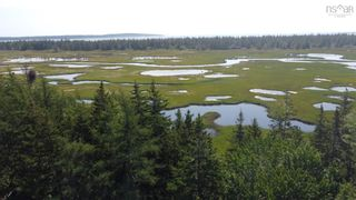 Photo 1: 1373 West Sable Road in Sable River: 407-Shelburne County Vacant Land for sale (South Shore)  : MLS®# 202122222