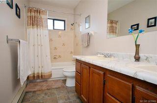 Photo 14: 913 Nicholson St in VICTORIA: SE High Quadra House for sale (Saanich East)  : MLS®# 789694