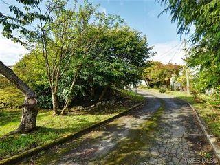 Photo 19: 318 Clifton Terr in VICTORIA: Es Saxe Point House for sale (Esquimalt)  : MLS®# 714838