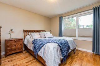 Photo 18: 3604 111A Street in Edmonton: Zone 16 House for sale : MLS®# E4255445