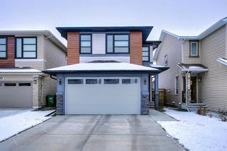 Photo 28: 16 Walden Mount SE in Calgary: Walden Residential for sale : MLS®# A1053734