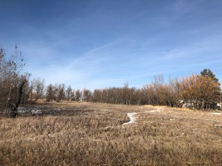 Photo 1: 0 53N Road: RM Tache Vacant Land for sale (R05)  : MLS®# 202109286